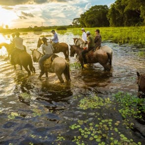 As belezas do Pantanal no Feriado (incluso pensão completa)